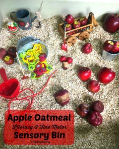 Apple Oatmeal Sensory Bin