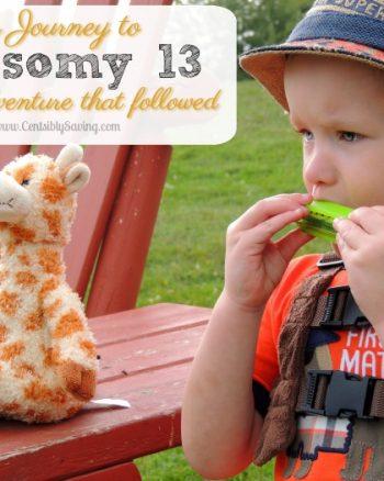 trisomy 13 blog