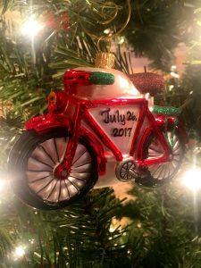 Christmas Tradition + a Trip to Bronner's